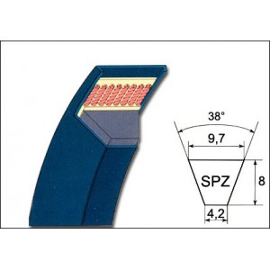 sezione_spz.jpg